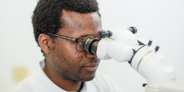Op-Mikroskop: Optimale Sicht auf kleinste Details